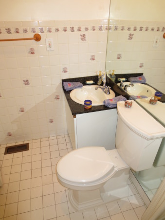 Guest Bathroom from Crappy to Snappy, This guest bathroom had white tile on  the floor and walls with seashells on many of the tiles.  It had floor to ceiling mirror behind the vanity/toilet wall.  The vanity was a kitchen cabinet turned upside down...all dating back to the mid 80's. The tub/shower was a modular unit with a small leak.  It has not been painted yet...trying to decide on a color.  So I have uploaded before and after photo's and would love to get feedback on which shower curtain/accessories look better.  Also thinking of painting a very paint gray or white.  Please note that the sheet rock is purple and not a paint. , This guest bathroom had white tile on  the floor and walls with seashells on many of the tiles.  It had floor to ceiling mirror behind the vanity/toilet wall.  The vanity was a kitchen cabinet turned upside down., Bathrooms Design