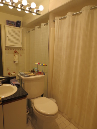 Guest Bathroom from Crappy to Snappy, This guest bathroom had white tile on  the floor and walls with seashells on many of the tiles.  It had floor to ceiling mirror behind the vanity/toilet wall.  The vanity was a kitchen cabinet turned upside down...all dating back to the mid 80's. The tub/shower was a modular unit with a small leak.  It has not been painted yet...trying to decide on a color.  So I have uploaded before and after photo's and would love to get feedback on which shower curtain/accessories look better.  Also thinking of painting a very paint gray or white.  Please note that the sheet rock is purple and not a paint. , This guest bathroom had white tile on  the floor and walls with seashells on many of the tiles.  It had floor to ceiling mirror behind the vanity/toilet wall.....all dating back to the mid 80's.  , Bathrooms Design