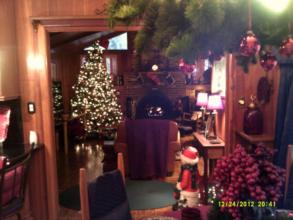 Merry Christmas, Living Room and Dining Room decorated, View from kitchen to family room, Holidays Design