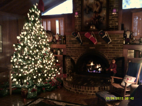 Merry Christmas, Living Room and Dining Room decorated, Family room (Golf room and golf tree), Holidays Design