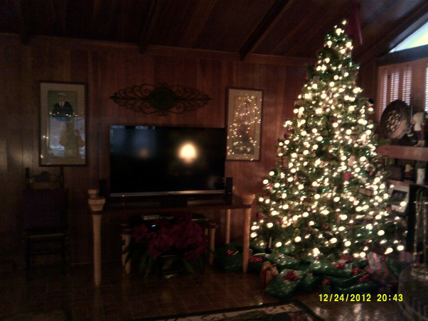 Merry Christmas, Living Room and Dining Room decorated, Family room, Holidays Design