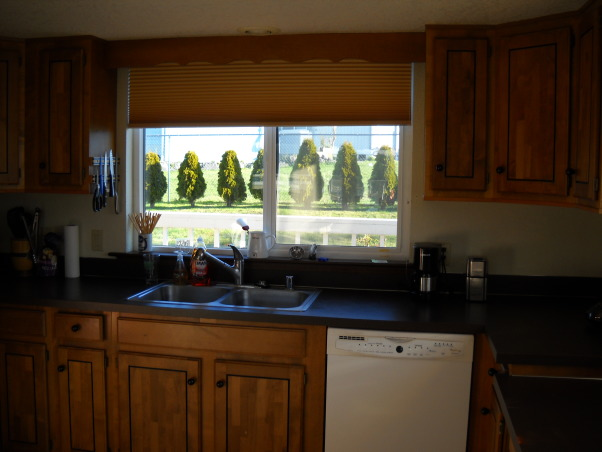 how would you remodel this kitchens - so you could use the view better, this is my - rental house.  the house need to be update so I can get more in rent., kitchen looking out to the back yard  , Kitchens Design
