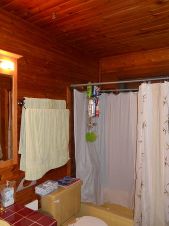 LOG CABIN to ROCKIN' BLUE, We took this small upstairs hall bathroom done in early Abe Lincoln and created  a contemporary master bathroom after combining the two small upstairs bedrooms in to a single large master bedroom. Rockin the glass wall tile, Before: Done in early Abe Lincoln .. soon to be gutted  , Bathrooms Design