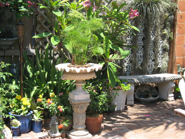 Tropical Treasure, I actually transformed this space for a couple of dear friends of mine. It was the gift of my labor and talent to them for their generosity.They let me stay in their home while i was in between my own spaces. , A birdbath that i converted into a water garden for a dwarf papyrus. , Gardens Design