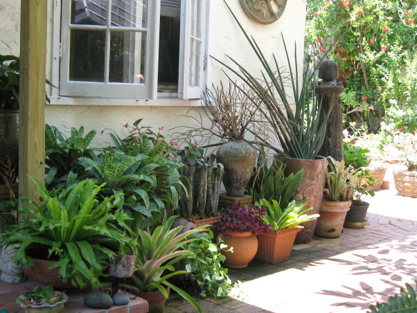 Tropical Treasure, I actually transformed this space for a couple of dear friends of mine. It was the gift of my labor and talent to them for their generosity.They let me stay in their home while i was in between my own spaces. , Pots, pots and more pots. When there is not ground for planting, use pots. , Gardens Design