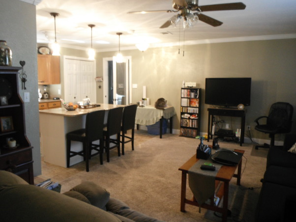 our short sale Living room makeover, we bought a short sale home with nothing in it and redid the entire space. , open floor plan to kitchen,,new glass door out to laundry room...      , Living Rooms Design