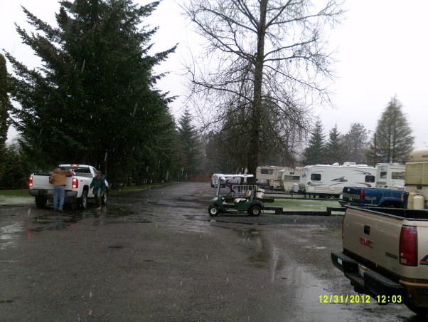 outside space next to RV, In Elma RV Park my small yard, lots of trees, a park like setting , Home Exterior Design