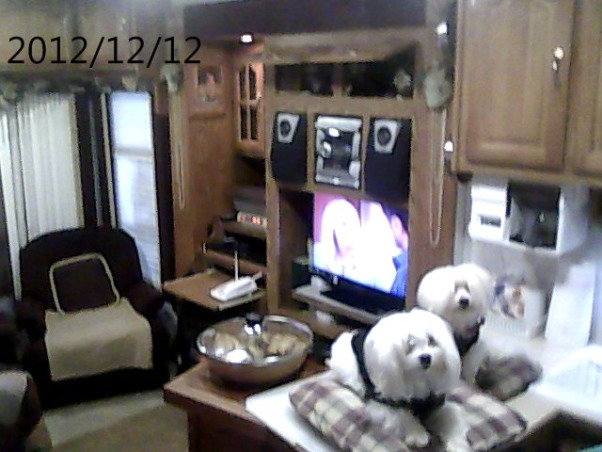 outside space next to RV, In Elma RV Park my small yard, inside new vision ulta 3 slids 37 ft, Home Exterior Design