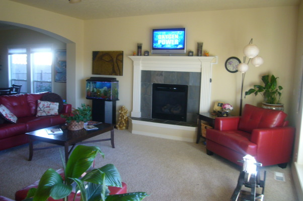Color Splash Question, Living Room. Wanting to paint walls, but what color with all the vibrant colors in the room already? OR Considering drapes. What color of drapes, and solid or print?, Living Room , Living Rooms Design