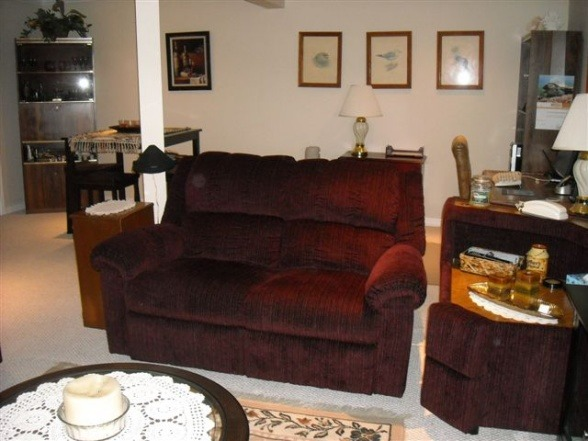 Facelift for Family Room, This is our family room.  It is quite cosy, and only has one window.  The walls are a pale beige, and we want to liven them up.  Our furniture is a dark plum colour.  What colour should I paint the walls? , Love seat in Family Room, Basements Design