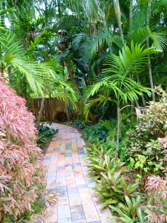 Private Paradise: Color all year long!, We've worked on our garden for the past 12 years. It includes many tropical and flowering plants, trees and fun decor., Palms provide shade for bromeliads, ferns and anthuriums., Gardens Design