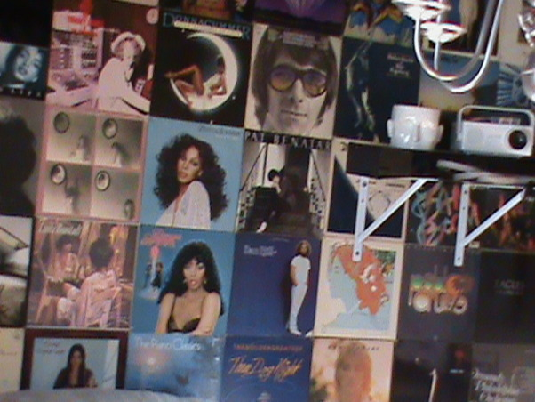 """A Musical Journey"", This is the far wall in my Media Room where I decided to cover the entire wall with Album Covers!, One close up photo of the Albums. , Media Rooms Design"