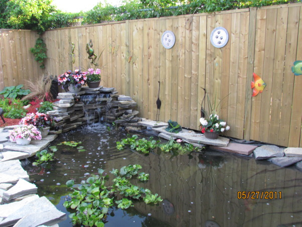 My  koi pond and waterfall, My do it myself pond i built by myself. I rented a small kabota and dug it out. Put in the liner, garden stones, flag stones and fencing myself. And built a small deck over part of it for the koi to have some shelter from predators. The dimensions are my pond are 19 feet x 12 feet wide and a gradual depth of almost 4 feet. My fiancé, dogs and I spent our spring, summer and fall out here., Some water plants in place. Also new back privacy fence built. , Other Spaces  Design