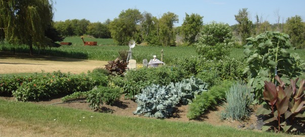 My 40 x 50 Garden, 40 x 50 Garden Vegies, Flowers, Raspberries   , Gardens Design