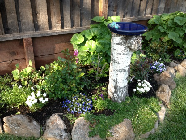 Backyard garden~, Raised beds for vegetables or cutting flowers, a Gnome Tree, flower borders and trees...., Beach Style Home~~  another view of the birdbath    , Gardens Design