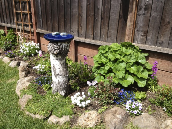 Backyard garden~, Raised beds for vegetables or cutting flowers, a Gnome Tree, flower borders and trees...., Beach Style Home~~  another view of the birdbath we made     , Gardens Design