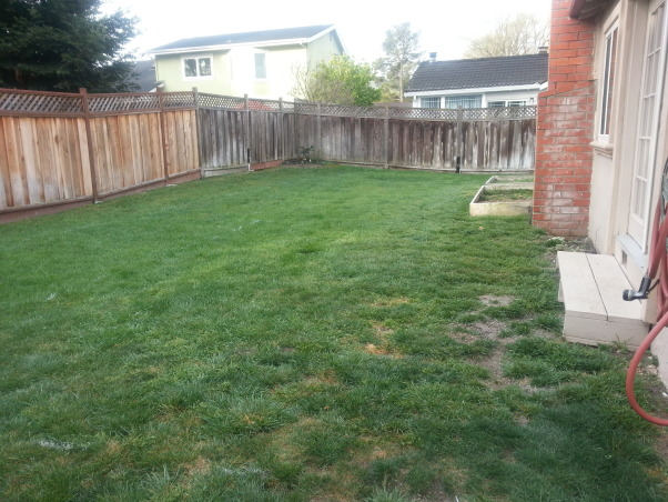 Before and After Backyard , Started with a blank slate of grass. Now, there's a dog run, a paver patio and artificial grass to enjoy our yard. , The drab, horrible grass area. We never really got to enjoy the yard this way. , Yards Design
