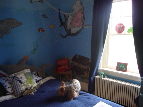 Under the sea, This is my grandson Gavin's new under the sea bedroom. He loves sharks so you can see there are a lot of different kinds of sharks. He kept asking me to add more and more fish till I finally had to tell him that he needed a bigger room. LOL, Boys' Rooms Design