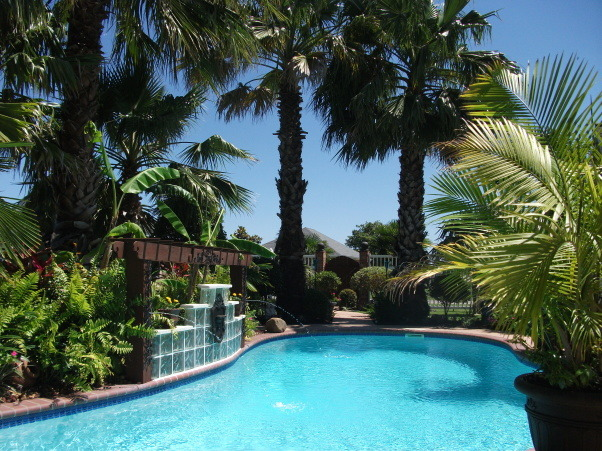 Poolside Patio Lounge with DIY Faux Wicker Daybed, DIY Outdoor/Poolside Makeover, Now, the seating matches the pool water and the tropical plants and palms.            , Patios & Decks Design