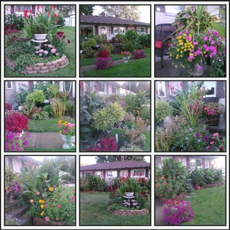 My little garden, Something that I love to do  :) , All together, Gardens Design