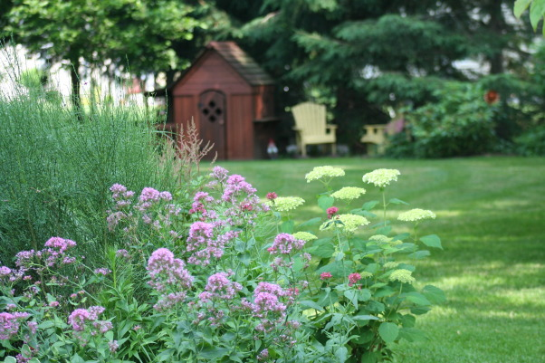 Ahh - summer in the garden!, My gardens, maturing and thriving  in the North East's summer., Gardens Design