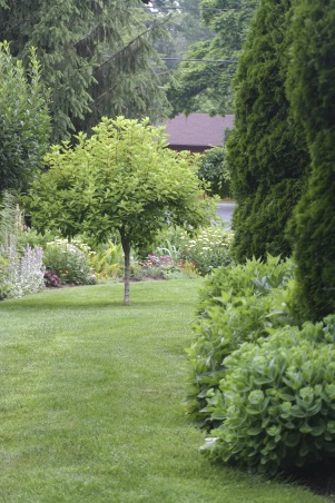 It just keeps changing!, Each few weeks, the gardens change and my excitement gets renewed. Walk with me!, Gardens Design