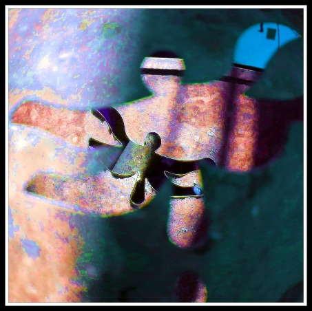 TroPICS., Pictures of my tropical garden in Florida., As seen through a metal, dragonfly candle container. , Gardens Design