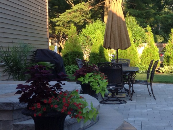 Our backyard, Cambridge bluestone paver large patio with living/dining room spaces.  Professionally landscaped, Patios & Decks Design