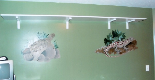 Nate and Mitch's Reptile Room, Handpainted murals of different reptiles.  I painted these for the room my Nephews Nate and Mitchell share., I painted these for two if my nephews.  They were moving into a room together and we wanted to do something they would both enjoy., Boys' Rooms Design