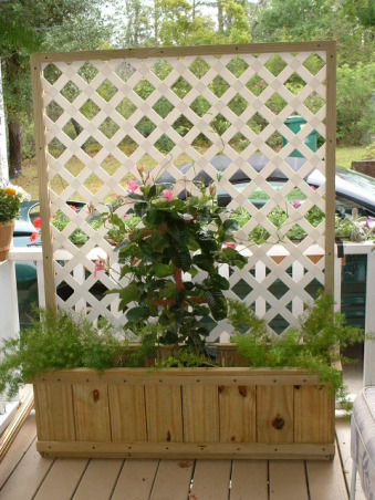 Portable privacy, I made these 2 planters for my daughter who lives in a rental - and needed some privacy.  After some paint and plants - she'll be able to set them on her patio for instant privacy.  Better yet - she'll be able to take them with her when she moves.  , Patios & Decks Design