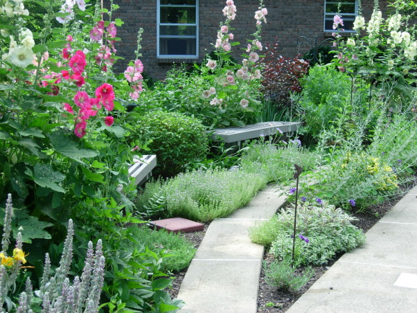 My secret gardens, Half moon shaped garden with holly hocks herbs false indigo birdbath pin cushion plant , Gardens Design