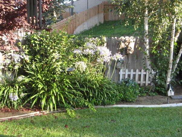 front walkway , front walk way bird house flags and black door, , Yards Design