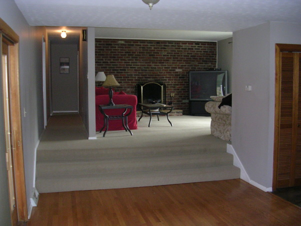 Mid-century Modern Living Room, Boring living room gets freshened up, The Before Picture, Living Rooms Design