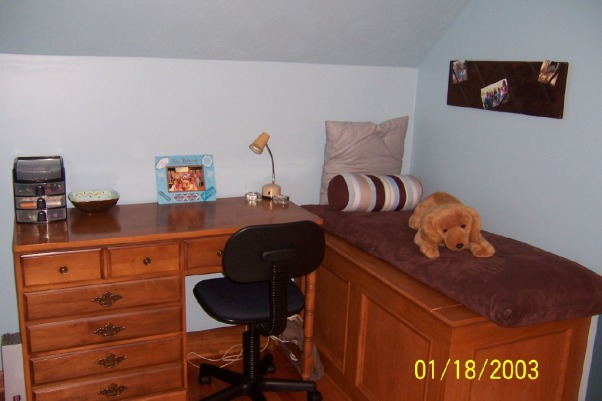 ~Blue and Brown Teen Bedroom~, Hi this is my bedroom that I personally designed.  I'm only 15 years old and I really enjoy decorating and designing spaces.  My family and I just finished painting it 2 months ago and I now love spending time in my room.  I hope that you enjoy looking at my pictures.  Please ignore the date on the pictures as my camera had the wrong date.  Feel free to post comments and I would appreciate it if you looked at all of the images and rated my space!!  Thanks for looking!!, Here is yet another view of my desk area.  You can see a neat bulletin board that is covered in brown suede fabric.  It's great for storing pictures and information.  This area has cute accessories that really help to tie the space together., Girls' Rooms Design