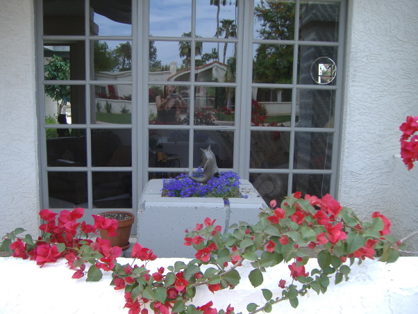 Front porch in Arizona , This is a fountain....but thought it would look better with flowers.....what do you think? , Porches Design