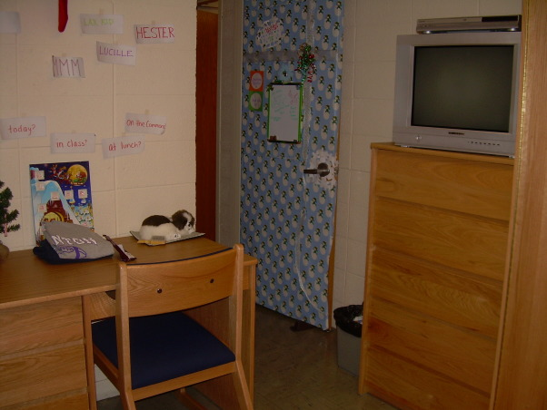 White walls & ugly furniture HELP!!!, So my college dorm room is pretty boring and it's smaller than other rooms because part of the next-door bathroom juts out into the space.  I'm not sure how to rearrange the room... any ideas?  I want this room to be a fun and functional work/play space!, This is the far back right corner and this view is from when you walk into the room., Dorm Rooms Design