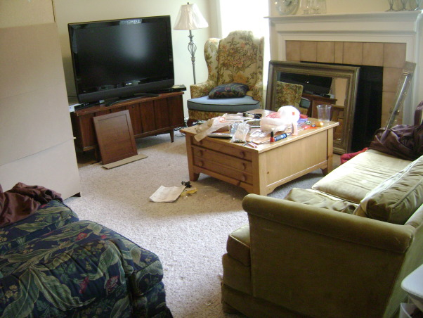 Chocolate and Blue, Welcome to my living room decorated with chocolate brown and a nice sky blue with green and silver accent colors. A couple of comfy couches and the best queen anne chairs you've ever seen., Don't you love the two florals and the green couch? So classy., Living Rooms Design