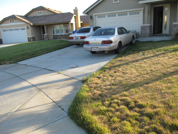 Modern Low Maintenance Landscape, My idea is to transform old front yard to new water saving landscape with modern,low maintenance and beauty look for all year long., Front House Before       , Landscaping