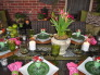 Lime-raspberry sorbet patio, Patios & Decks Design