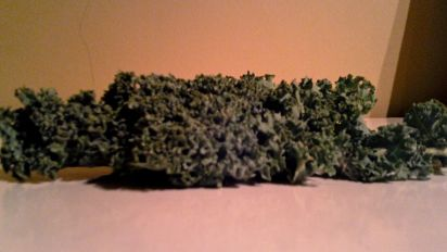 Quick Microwave Kale Chips Recipe