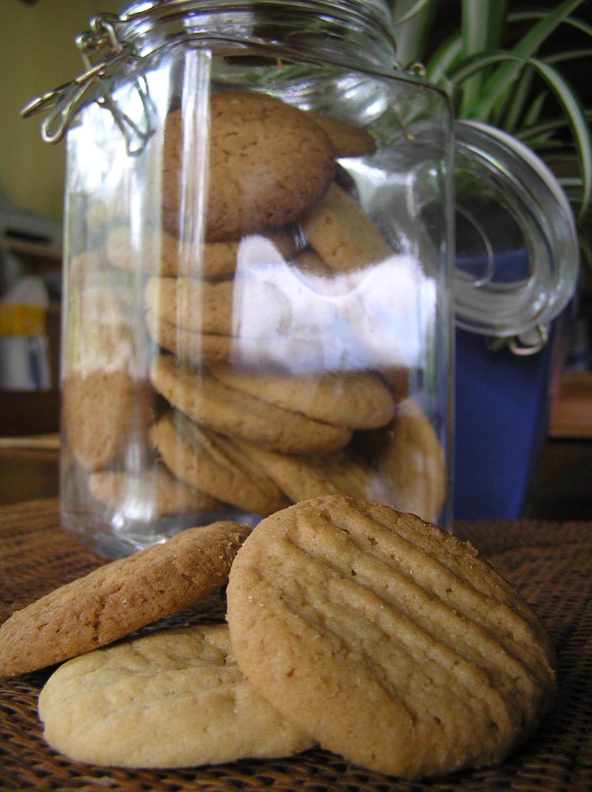 Crispy Coconut Cookies image