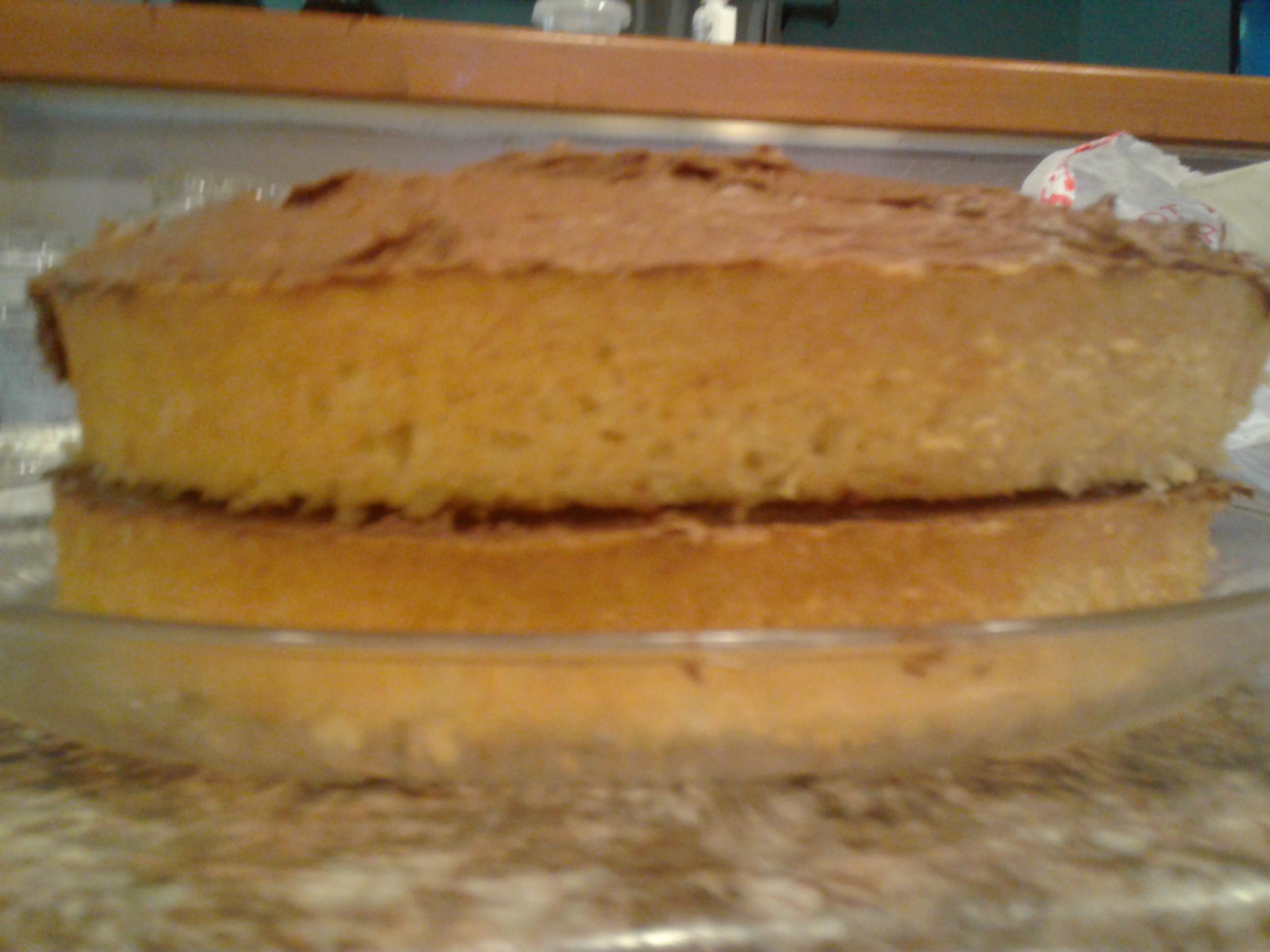 Southern Living Basic Yellow Cake Recipe Or Chocolate Recipe