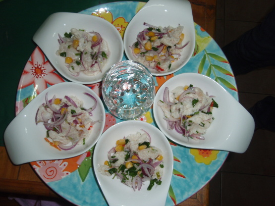 Ceviche Peruvian Kitchen Review