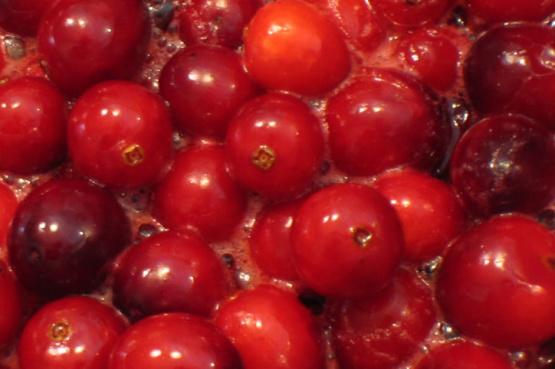 Cranberry Citrus Sauce Food Network