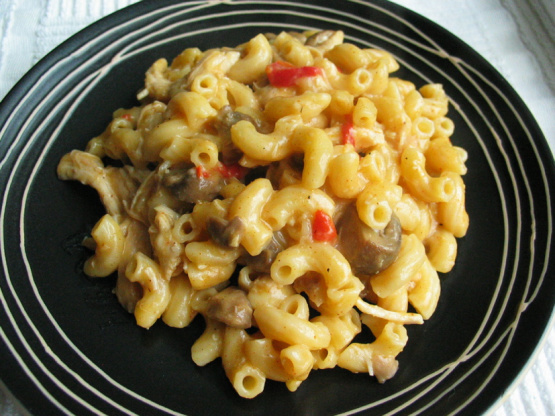recipe: chicken and macaroni recipes [4]