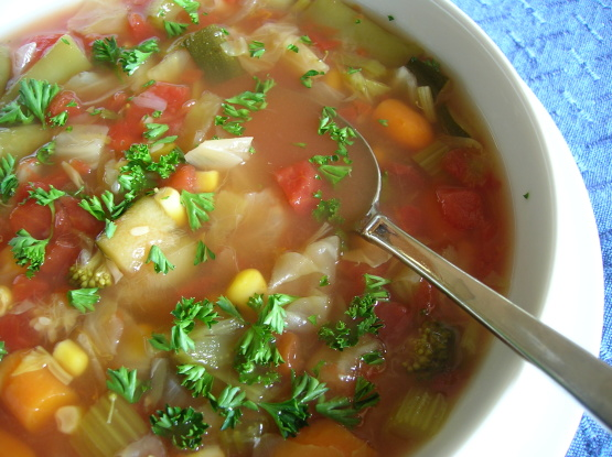 Diet soup recipe genius kitchen forumfinder Images