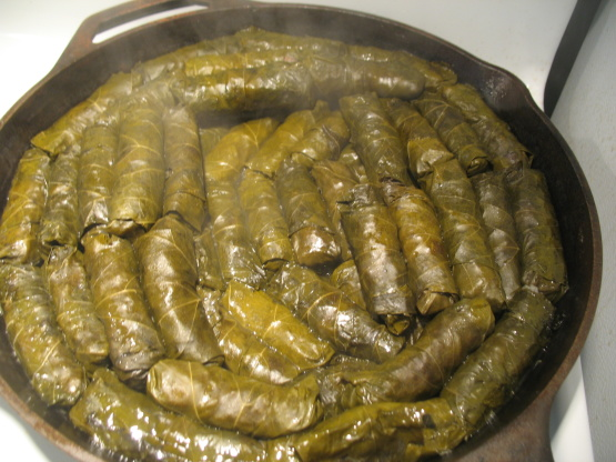 Dolmades Stuffed Grape Leaves Recipe Genius Kitchen