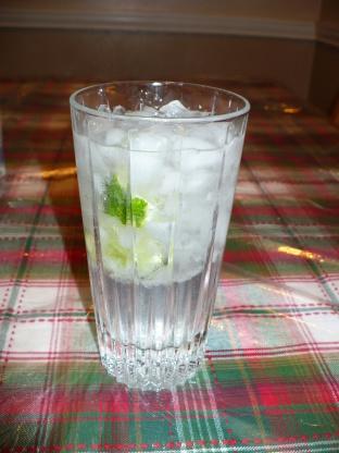 Vodka Tonic Recipe Genius Kitchen