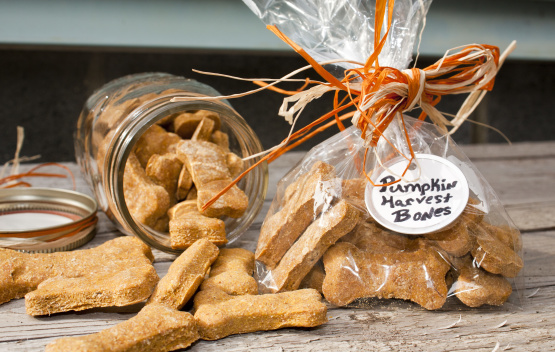 Pumpkin Dog Biscuits Recipe - Genius Kitchen