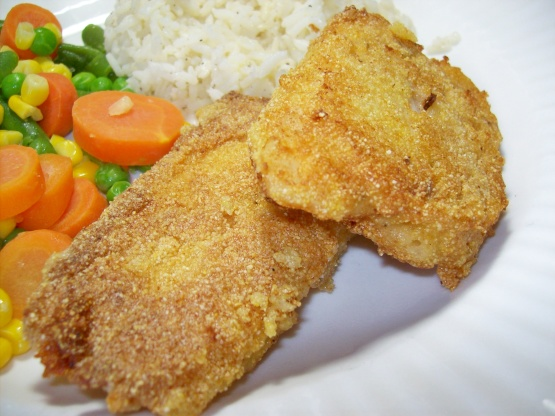 Pan fried cornmeal batter fish recipe genius kitchen for Pan fried fish fillet recipes